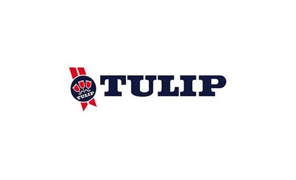 tulip-logo